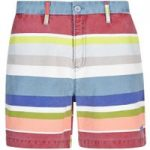 Weird Fish Zula Printed Stripe Short Citadel Size 18