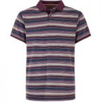 Weird Fish Bolam Stripe Polo Wine Size 5XL