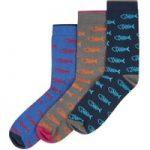 Weird Fish 3 Pack Classic Bones Socks Multi Size 7-11