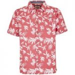 Weird Fish Mullins Hawaiian Short Sleeve Shirt Rose Size 5XL